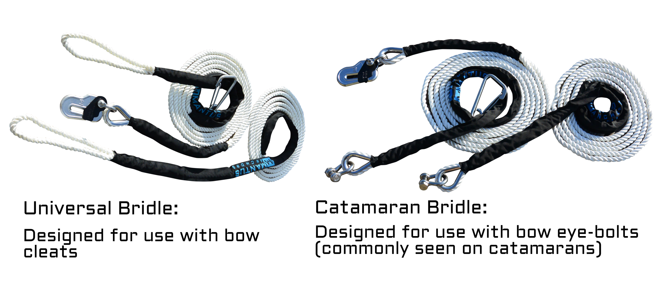 Combined Bridle Option Image